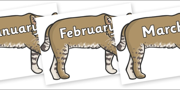 Months of the Year on Bobcats - Months of the Year, Months poster, Months display, display, poster, frieze, Months, month, January, February, March, April, May, June, July, August, September