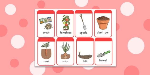 Grow your Own Vegetables Flashcards - australia, vegetables