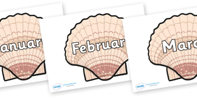 Months of the Year on Seashells - Months of the Year, Months poster, Months display, display, poster, frieze, Months, month, January, February, March, April, May, June, July, August, September