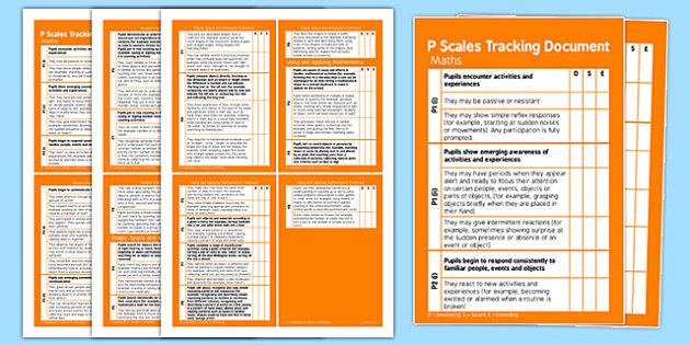 P Scales Tracking Maths Pocket Book