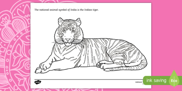 Indian Tiger Colouring Page