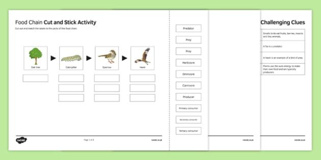 Woodland Food Web Cut and Stick Activity Sheet, worksheet