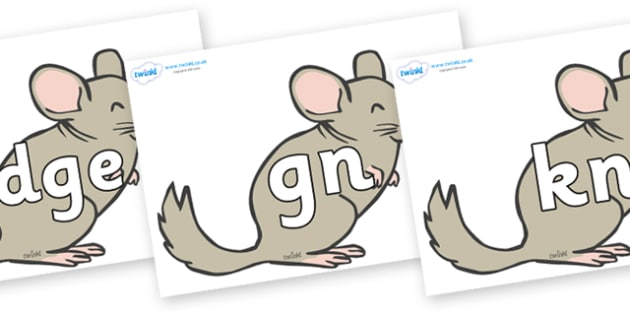 Silent Letters on Chinchillas - Silent Letters, silent letter, letter blend, consonant, consonants, digraph, trigraph, A-Z letters, literacy, alphabet, letters, alternative sounds