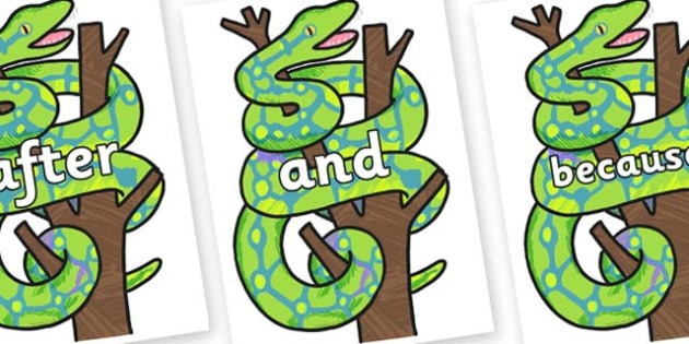 Connectives on Boa Constrictor to Support Teaching on The Bad Tempered Ladybird - Connectives, VCOP, connective resources, connectives display words, connective displays