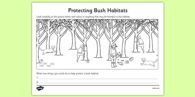 Protecting Bush Habitats Colouring Activity - australia, Science, Year 1, Bush, Habitats, Australian Curriculum, Living, Living Adventure, Environment, Living Things, Animals, Plants, Worksheet