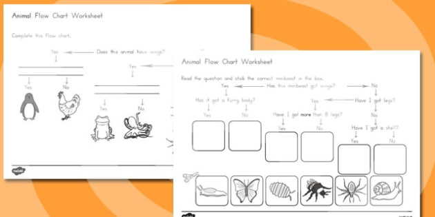 Animal Flow Chart Worksheets - australia, animal, flow chart