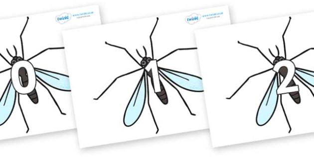 Numbers 0-50 on Crane Flies - 0-50, foundation stage numeracy, Number recognition, Number flashcards, counting, number frieze, Display numbers, number posters