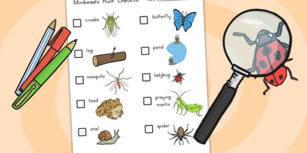 Minibeasts Investigation Lab Checklist of Minibeasts - role play