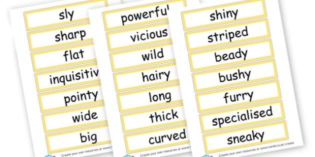 Adjectives Describe Nocturnal Animals - Adjectives Primary Resources, cll, wow, keywords, describing words