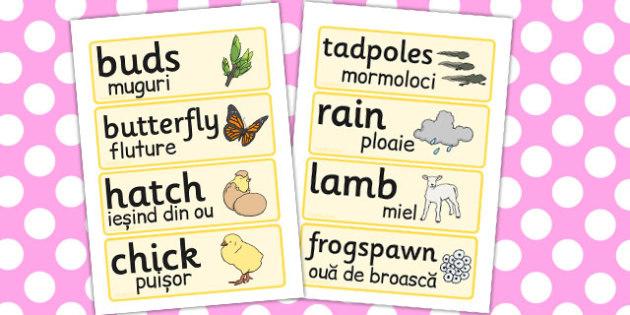Spring Word Cards Romanian Translation - seasons, season, display