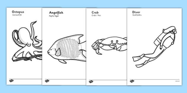 Under The Sea Colouring Posters Romanian Translation - Romanian, bilingual, fish, sea, posters, colouring