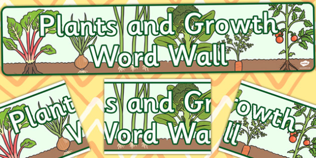 Plant and Growth Word Wall Display Banner - plant, word, display