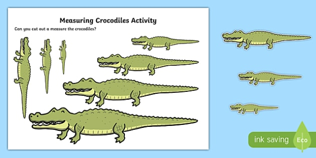 Measuring Crocodiles Activity to Support Teaching on The Enormous Crocodile