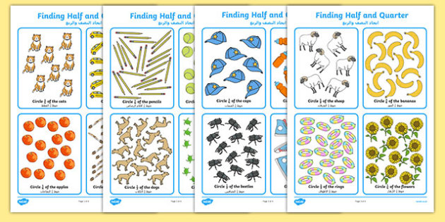 Finding Half and Quarter Activity Sheet Arabic Translation - arabic, KS1 Maths, half, quarter, whole, part of, find, solve, divided, shared, grouped, year 1, year 2, fractions, worksheet