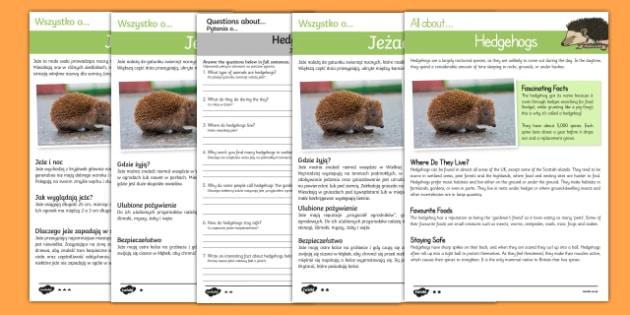 Hedgehogs Reading Comprehension English/Polish