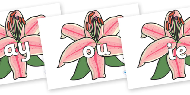 Phase 5 Phonemes on Lilies - Phonemes, phoneme, Phase 5, Phase five, Foundation, Literacy, Letters and Sounds, DfES, display