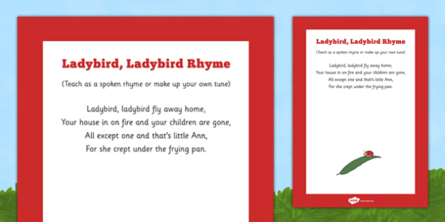 Ladybird, Ladybird Rhyme Poster -minibeasts, bugs, insects, beetles, creatures, ladybirds