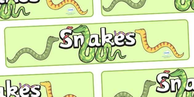 Snakes Display Banner - snakes, animal, display, banner, sign, poster, snkae