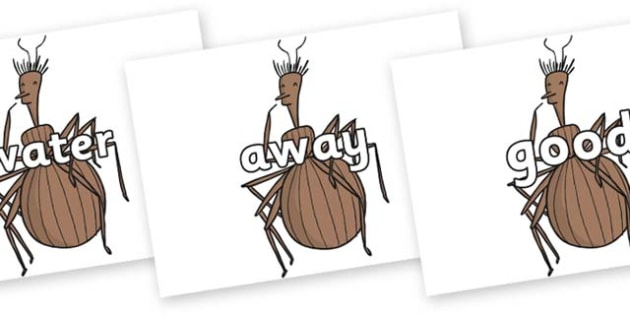 Next 200 Common Words on Miss Spider to Support Teaching on James and the Giant Peach - Next 200 Common Words on  - DfES Letters and Sounds, Letters and Sounds, Letters and sounds words, Common words, 200 common words