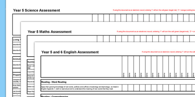 New Curriculum Year 5 Reading Writing Maths Science Assessment Spreadsheet - assessment