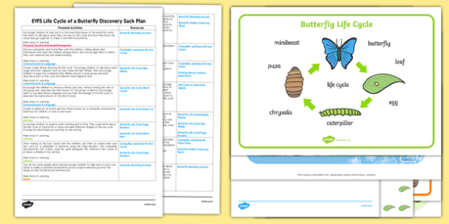 EYFS Life Cycle of a Butterfly Discovery Sack Plan and Resource Pack - discovery, sack, cycle