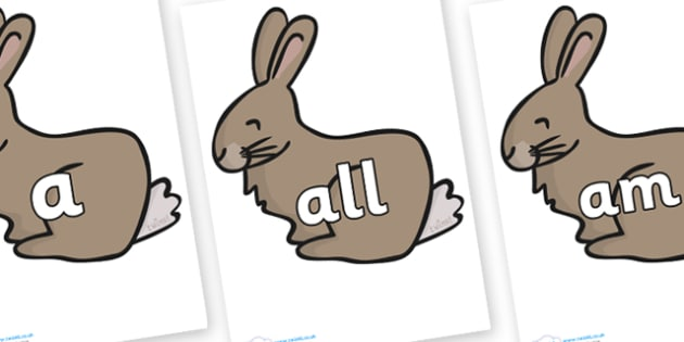 Foundation Stage 2 Keywords on Rabbit - FS2, CLL, keywords, Communication language and literacy,  Display, Key words, high frequency words, foundation stage literacy, DfES Letters and Sounds, Letters and Sounds, spelling