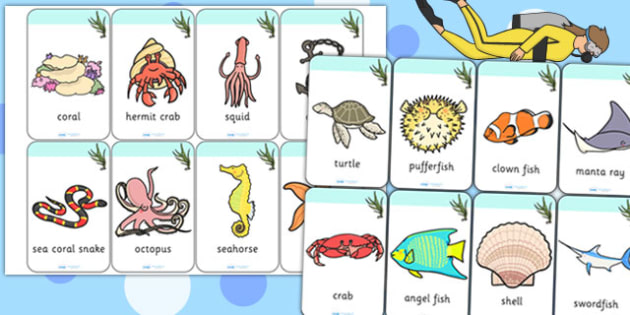 Under the Sea Flashcards - visual aids, discussion prompts