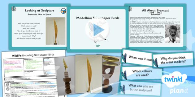 PlanIt - Art UKS2 - Wildlife Lesson 5: Modelling Newspaper Birds Lesson Pack