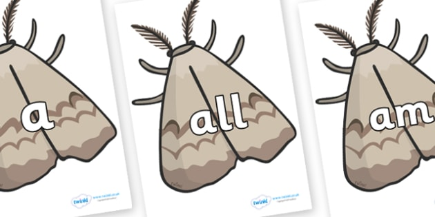 Foundation Stage 2 Keywords on Moths - FS2, CLL, keywords, Communication language and literacy,  Display, Key words, high frequency words, foundation stage literacy, DfES Letters and Sounds, Letters and Sounds, spelling