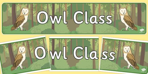 Owl Class Display Banner - owl, class, display banner, display