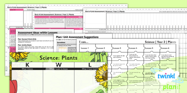 PlanIt - Science Year 2 - Plants Unit Assessment Pack - science, plants, assessment, planit, science, ks1, 2014, curriculum, planning, assessment