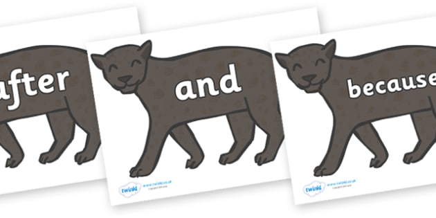 Connectives on Panthers - Connectives, VCOP, connective resources, connectives display words, connective displays