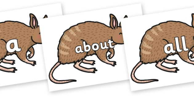 100 High Frequency Words on Bandicoot - High frequency words, hfw, DfES Letters and Sounds, Letters and Sounds, display words