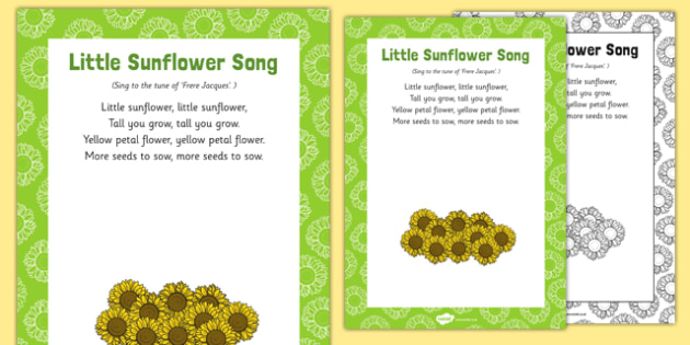Little Sunflower Song
