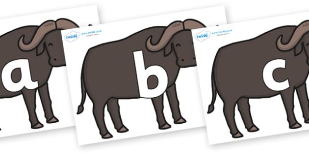Phoneme Set on Buffalos - Phoneme set, phonemes, phoneme, Letters and Sounds, DfES, display, Phase 1, Phase 2, Phase 3, Phase 5, Foundation, Literacy