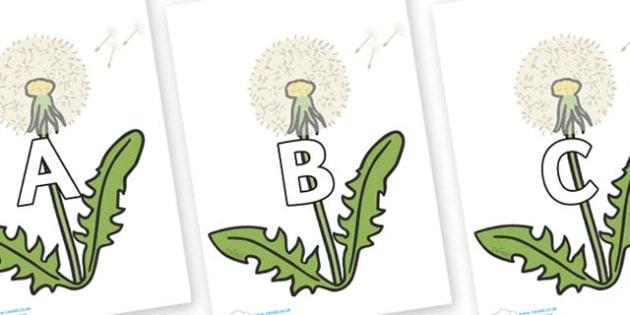 A-Z Alphabet on Dandelion Seeds - A-Z, A4, display, Alphabet frieze, Display letters, Letter posters, A-Z letters, Alphabet flashcards