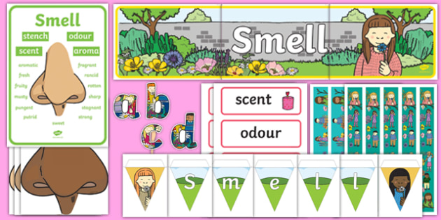 Smell Display Pack