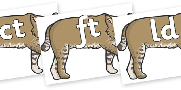 Final Letter Blends on Bobcats - Final Letters, final letter, letter blend, letter blends, consonant, consonants, digraph, trigraph, literacy, alphabet, letters, foundation stage literacy