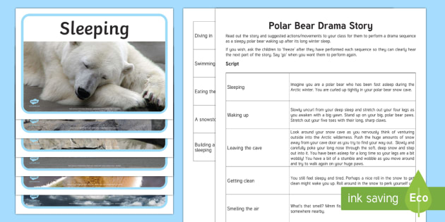Polar Bear Drama Story - The Arctic, Polar Regions, north pole, south pole, explorers, script, story script, drama, role play