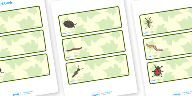 Editable Drawer - Peg - Name Labels (Minibeasts) - Minibeast themed Label Templates, minibeasts, Resource Labels, Name Labels, Editable Labels, Drawer Labels, Coat Peg Labels, Peg Label, KS1 Labels, Foundation Labels, Foundation Stage Labels, Teachin