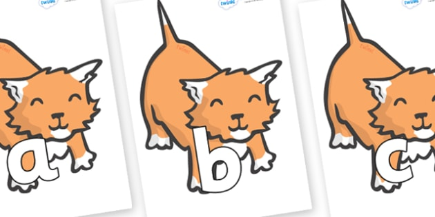 Phoneme Set on Kittens - Phoneme set, phonemes, phoneme, Letters and Sounds, DfES, display, Phase 1, Phase 2, Phase 3, Phase 5, Foundation, Literacy