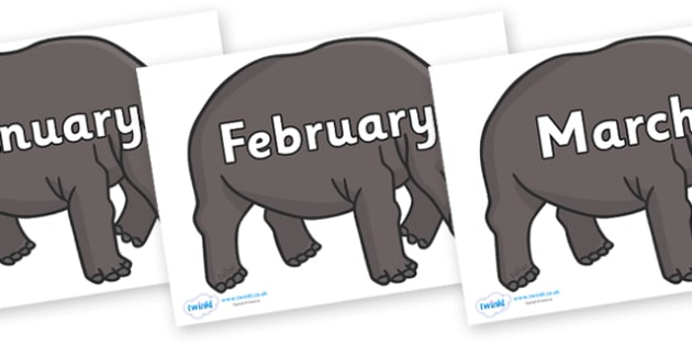 Months of the Year on Hippos - Months of the Year, Months poster, Months display, display, poster, frieze, Months, month, January, February, March, April, May, June, July, August, September