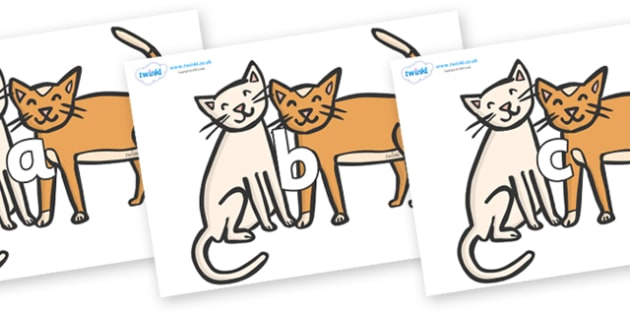 Phase 2 Phonemes on Cats - Phonemes, phoneme, Phase 2, Phase two, Foundation, Literacy, Letters and Sounds, DfES, display