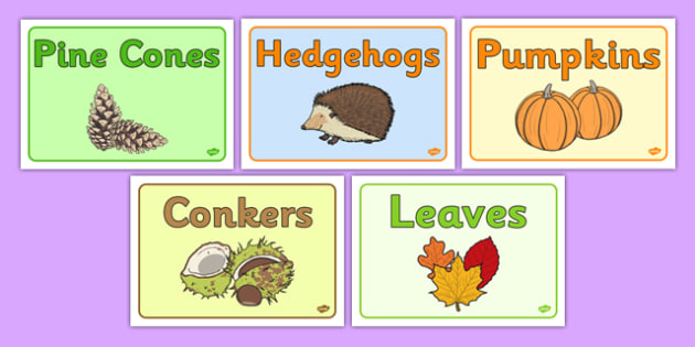 Autumn Class Group Signs - nz, new zealand, Autumn, group signs, group labels, group table signs, table sign, teaching groups, class group, class groups, table label, harvest,  harvest festival, fruit, apple, pear, orange, wheat, bread, grain, leaves