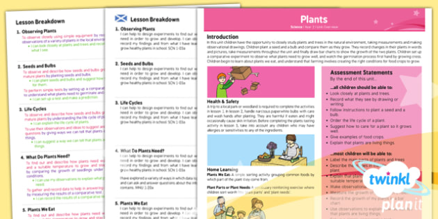 PlanIt - Science Year 2 - Plants Planning Overview CfE - plants, science, planit, ks1, growth, science, planning, 2014, curriculum