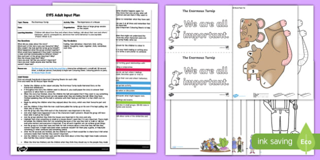 EYFS The Importance of a Mouse Adult Input Plan and Resource Pack