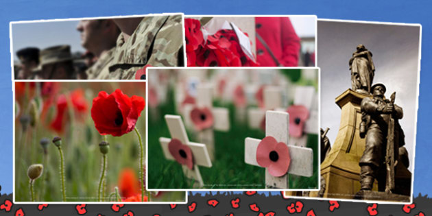 Remembrance Day Photo Clip Art Pack - remembrance day, pack, art