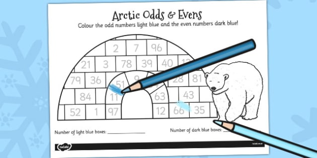 Arctic Odds and Evens Colouring Activity - activity, colouring