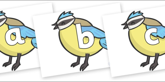 Phoneme Set on Birds - Phoneme set, phonemes, phoneme, Letters and Sounds, DfES, display, Phase 1, Phase 2, Phase 3, Phase 5, Foundation, Literacy