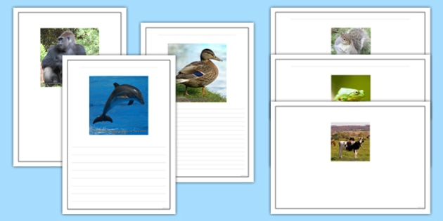 Photo Animal Writing Frames - photo, animal, writing frames, writing, frames